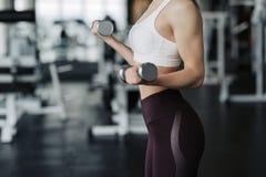 Kantjusterat kroppslut upp av den unga attraktiva kvinnan i sportkläder som rymmer vikthanteln som gör konditiongenomkörare i idr royaltyfri foto