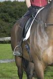 Kantjusterat skott av hästryggen Rider And Horse Arkivfoton