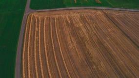 Kantjusterat skott för surr för vetefält flyg- arkivfoton