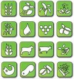 kantjustering som brukar glansiga gröna symboler vektor illustrationer