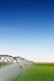 kantjusteringsbevattning Arkivbild