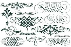 kantlagrar låter vara vektorn för oakbandmallen Annonseringar, reklamblad, rengöringsduk, bröllop och andra inbjudningar eller hä Royaltyfri Bild