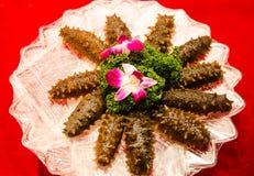 The kanto trepang Stock Photo