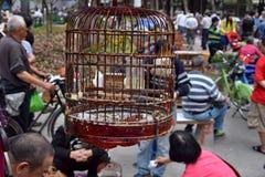 KANTON, CHINA - CIRCA MAART 2018: De markt van Birdin het stadspark Stock Foto
