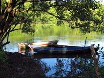 Kanus in den Bäumen lizenzfreies stockfoto