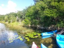 Kanus an der Affe-Reserve Punta Laguna Stockfoto