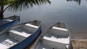 Kanus Florida stockbild