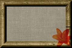 kanwa obramiający szorstki Obraz Royalty Free