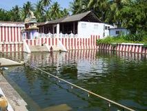 Kanyakumari Tamil Nadu, Indien - Oktober 8, 2008 damm för grön färg för A litet nära den Nagaraja templet Arkivfoto