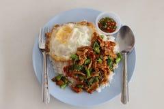 Kao-block-Kra-Prao, kryddig mat, chilimat eller thailändska ris med griskött och basilika, Thailand gatamat arkivbild