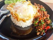 Kao ochraniacz Kra Prao lub Tajlandzcy ryż z wieprzowiną i basilem Fotografia Stock
