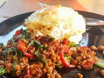 Kao ochraniacz Kra Prao lub Tajlandzcy ryż z wieprzowiną i basilem Zdjęcie Royalty Free