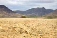 Kaokoland desert Royalty Free Stock Image
