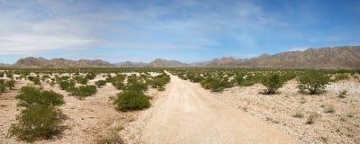 Kaokoland desert road Stock Images