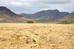 Kaokoland pustynia Obraz Royalty Free