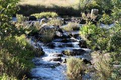 Kaombe-Fluss Sambia Lizenzfreie Stockbilder