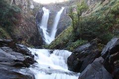 Kaombe river Zambia Royalty Free Stock Photos