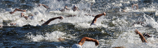 Kaos av simningarmar i vattnet Arkivfoton