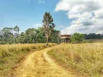 Kaoyai nationalpark, Thailand Arkivbilder