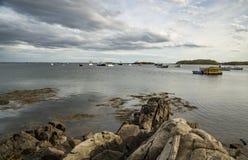 Kap-Tümmler in Maine, USA stockfoto