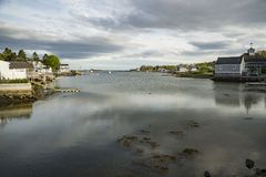 Kap-Tümmler, Maine USA stockfotos