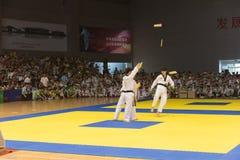 Kapacitet-öppning ceremoni--Den åttonde konkurrensen för GoldenTeam koppTaekwondo vänskapsmatch Royaltyfri Fotografi