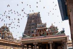 Kapaleeswarar Koil Stock Images