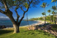 Kapalua plaża na zachodnim wybrzeżu Maui, Hawaje Zdjęcie Royalty Free