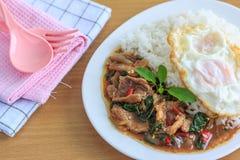 Kapao mu (thailändsk mat) Royaltyfria Foton