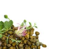 Kapary z kaparowym kwiatem na bielu, żywności organicznej tło obrazy royalty free
