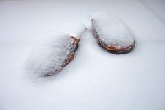 Kapcie w śniegu Zdjęcia Royalty Free
