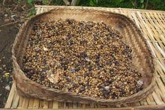 Kape Alamid Coffee Stock Photos