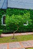 Kapel met groene bomen Stock Foto
