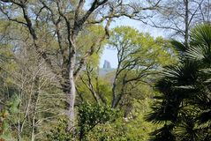 Kapel op een Heuvel Royalty-vrije Stock Fotografie