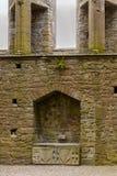 Kapell av konungen Cormac Mac Carthaigh på vagga av Cashel Royaltyfri Fotografi