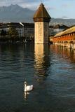 Kapell Bridge1 Fotografering för Bildbyråer