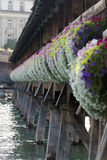 Kapellbrücke, Lucerne Royalty Free Stock Photos
