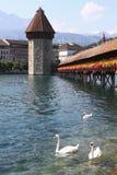 Kapellbro i Lucerne Arkivbild