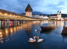 Kapellbro- och vattentorn på natten med svanar på sjön Lucern royaltyfri foto