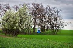 Kapelle auf einem Gebiet umgeben durch Bäume mit drastischen bewölkten Himmeln Stockbild