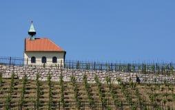 Kapellet av St Klara och historiska vingårdar, Prague Arkivbild