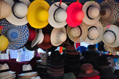 kapelusze Panama Obrazy Royalty Free