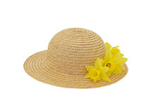 kapeluszowa wiosna Zdjęcia Stock