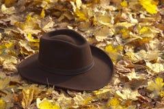 kapeluszowi liść Zdjęcia Stock