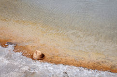 kapeluszowy gorący obsługuje wiosna Zdjęcia Royalty Free