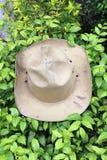 Kapeluszu skautowski stawiający dalej zielony krzak khaki kolor kapelusz zdjęcie stock