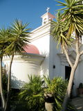 Kapernaum palms near Greek Orthodox Church 2010 Stock Photography
