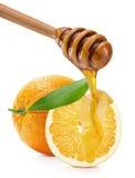 Kapiący miód na pomarańczach odizolowywać na białym tle obraz stock