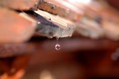 kapiący waterdrops dachowe Obrazy Royalty Free