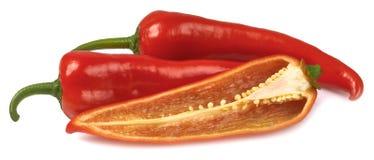 Kapia πιπεριών που απομονώνεται Στοκ Φωτογραφία